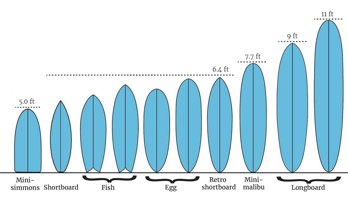 Come scegliere la tavola da surf per iniziare a cavalcare ...
