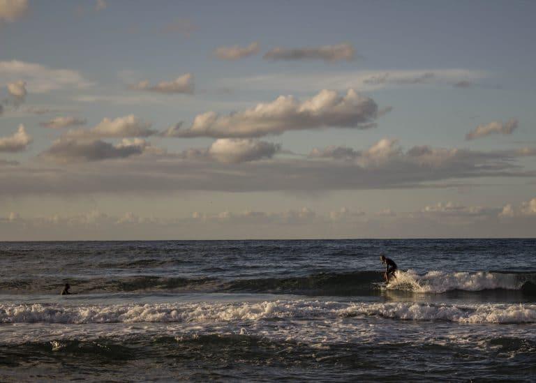 surf palermo