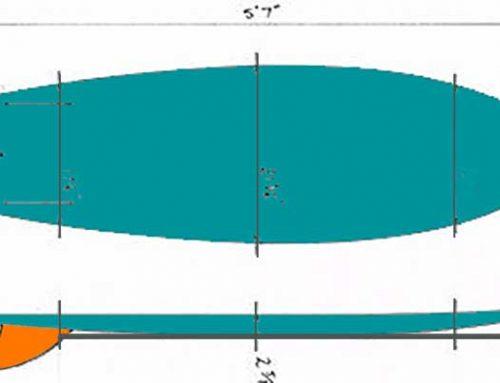 TAVOLA SURF FISH E I SUOI SEGRETI
