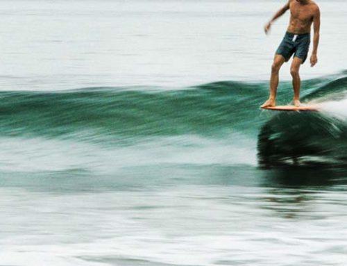 tavola surf longboard