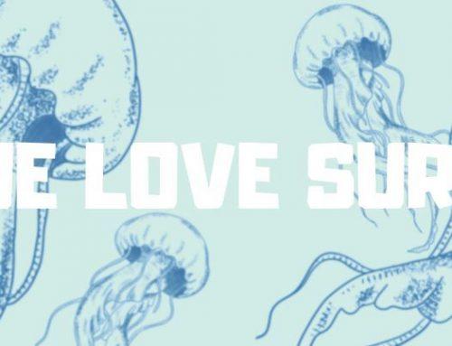 We Love surf Intervista