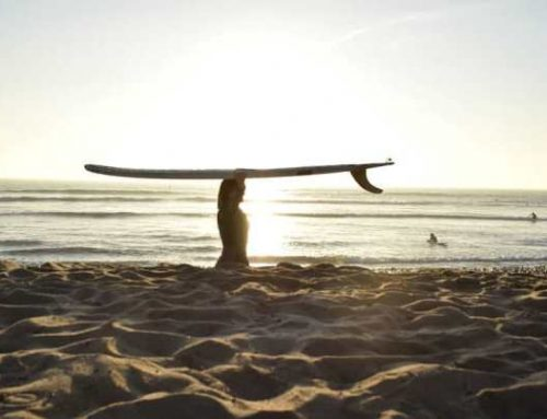 NOSERIDING LONGBOARD SURF