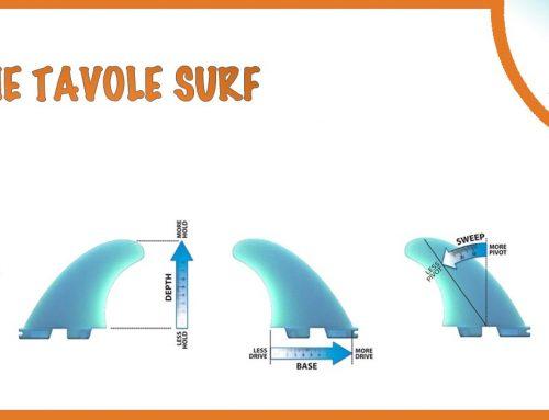 SCEGLIERE LE PINNE DA SURF
