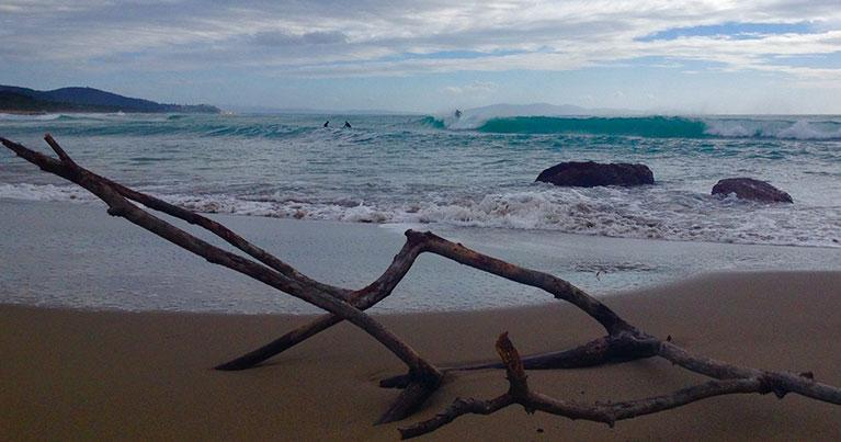 spiaggia toscana surf con legni lasciati dal mare