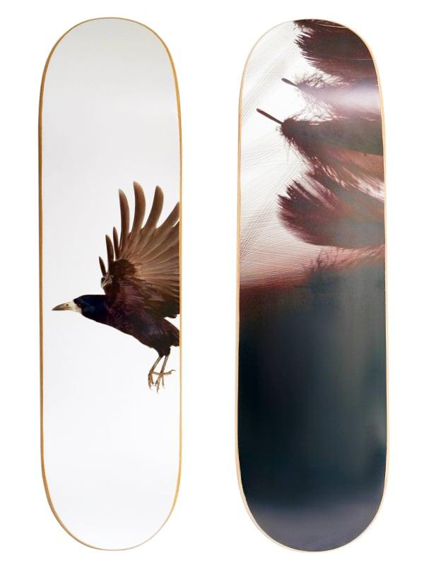 Skate arredo design corvo
